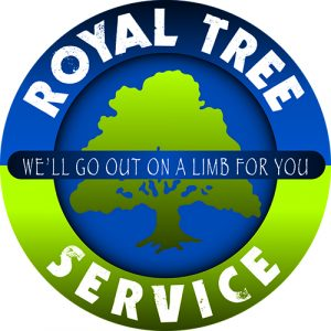 Royal Tree Service is a client-focused tree preservation firm that specializes in organic and environmentally conscious tree care.